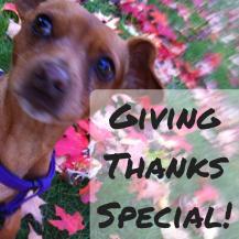 givingthanksspecial